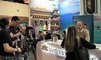 Russische Besucher interessieren sich für Küsten- Meerestourismus in Vietnam