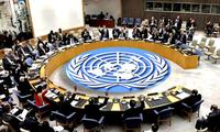 Vietnam will stärker zum Frieden der Welt beitragen
