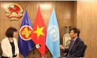 Internationale Freunde unterstützen die Kandidatur Vietnams für Nichtständiges Mitglied des UN-Sicherheitsrats