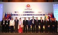 Die Konferenz der hochrangigen Beamte der ASEAN-Länder über Land- und Forstwirtschaft