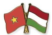 Freundschaftstreffen zwischen Vietnam und Ungarn