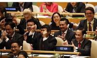Zahlreiche Länder haben den Vorsitz Vietnams im UN-Sicherheitsrat gelobt