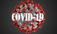 Covid-19 fordert die Weltwirtschaft heraus