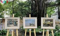 Ausstellung der Bilder der vietnamesischen Maler während der sozialen Distanzierung