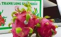 Zahlreiche positive Signale von den Importmärkten für vietnamesische Früchte und Gemüse