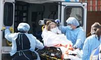 Covid-19-Infizierte weltweit über 40 Millionen