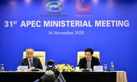 Vietnam unterstützt die Verabschiedung der Erklärung der APEC-Länder über die Vision nach 2020