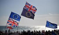 EU-Mitgliedsländer geben grünes Licht für Brexit-Handelspakt