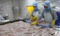 Prognose für das positive Wachstum der Fischerei-Branche im Jahr 2021