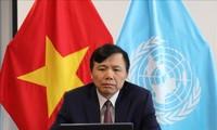 Vietnam will einen Meilenstein während der Amtszeit als Vorsitzender des UN-Sicherheitsrats markieren