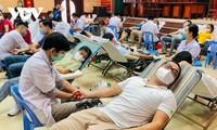 Fast 600 Menschen beteiligen sich an Blutspende in Da Nang