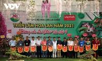 Mehr als 1000 Orchideen-Töpfer werden in der Ausstellung in Lai Chau präsentiert
