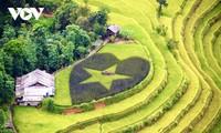 """Kulturwoche """"Durch die Reisterrassen in Hoang Su Phi"""" im September"""