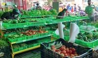 Gewährleistung der Lieferung lebensnotwendiger Waren für Provinzen im Süden