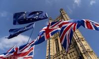 Brexit : L'UE très inquiète après le vote britannique en faveur du projet de loi qui viole le droit international