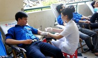 Đà Nẵng, Tuyên Quang mít tinh hưởng ứng Ngày toàn dân hiến máu tình nguyện
