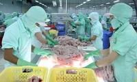 Bộ Thương mại Hoa Kỳ lại áp thuế cao đối với cá tra, cá basa Việt Nam