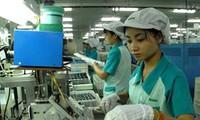 Thành lập Hội doanh nghiệp Việt Nam tại Nhật Bản