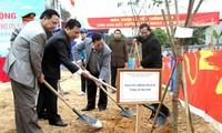 """Sôi nổi Tết trồng cây """"Đời đời nhớ ơn Chủ tịch Hồ Chí Minh"""" năm 2014"""