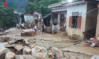 Вьетнам выдвинул инициативу снижения риска стихийных бедствий, вызванных изменением климата