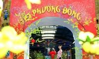 Программа «Новогодние праздники в азиатских странах» в парке «Западное озеро»