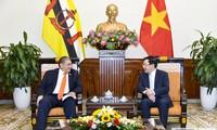 Вьетнам и Бруней активизируют сотрудничество в разных сферах