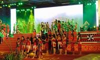 В Куангнаме открылся 3-й Фестиваль женьшеня Нгоклинь