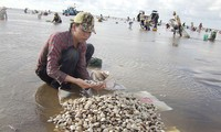 Вьетнам расширяет экспорт с Китаем