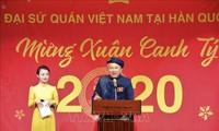 Вьетнамцы за рубежом встречают Тэт
