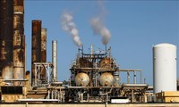 ОПЕК понизила прогноз мирового спроса на нефть в 2020 году