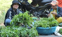 Гуманизм в борьбе с COVID-19 в провинции Куангнам