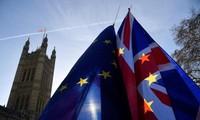 Великобритания: Делегация ЕС получит привилегии и необходимые иммунитеты