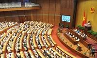 Para anggota MN Vietnam mendengarkan pemaparan RUU mengenai perlindungan dan pengembangan hutan (amandemen)