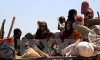 AS bersedia berkoordinasi dengan Rusia untuk membentuk mekanisme menjamin kestabilan di Suriah
