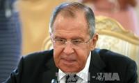 Mesir dan Rusia ingin mengadakan kembali aktivitas penerbangan