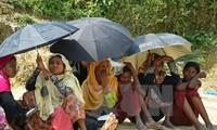 DK PBB mengeluarkan Pernyataan Bersama tentang situasi negara bagian Rakhine (Myanmar)