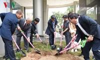 VOV menerima 100 pohon sakura pemberian oleh Sekolah bahasa JepangKairinjuku