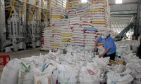 Ekspor beras Vietnam ke Malaysia meningkat secara mendadak