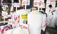 Kamboja: Ekspor beras selama 7 bulan awal tahun menurun hampir 19.000 ton