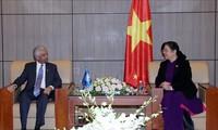 Wakil Harian Ketua MN Vietnam, Tong Thi Phong menerima Koordinator Tetap PBB di Vietnam