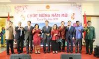 Komunitas orang Vietnam di luar negeri merayakan Musim Semi 2019