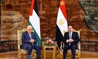Liga Arab mendukung Palestina mengusahakan solusi politik