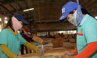 We-Fi membantu badan-badan usaha kecil dan menengah yang dikelola perempuan di Vietnam dan di kawasan Pasifik
