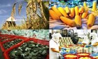 Ekspor regular – langkah  berhasil-guna untuk membawa hasil pertanian dan hasil perikanan Vietnam Barat ke pasar Tiongkok