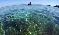 Kota Da Nang mencanangkan Pekan Laut dan Pulau Vietnam