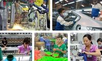 Badan-badan usaha Vietnam memanfaatkan peluang dari Perjanjian EVFTA