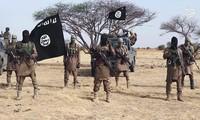 IS bertanggung jawab melaksanakan serangan-serangan di Nigeria Timur Laut