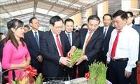Membangun pedesaan baru dikaitkan dengan usaha merestrukturisasi pertanian, mengembangkan dan mengkonektivitaskan perkotaan