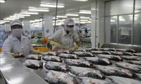 AS mengakui sistem kontrol keselamatan bahan makanan ikan tidak bersisik Vietnam