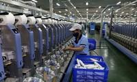 Fitch Ratings: Ekonomi Vietnam menjadi titik cerah di kawasan